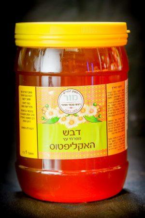 דבש מפרחי עץ האיקליפטוס | משק מור